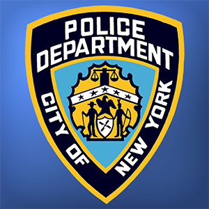 New York Police Department Blue Ocean Strategy Case Study
